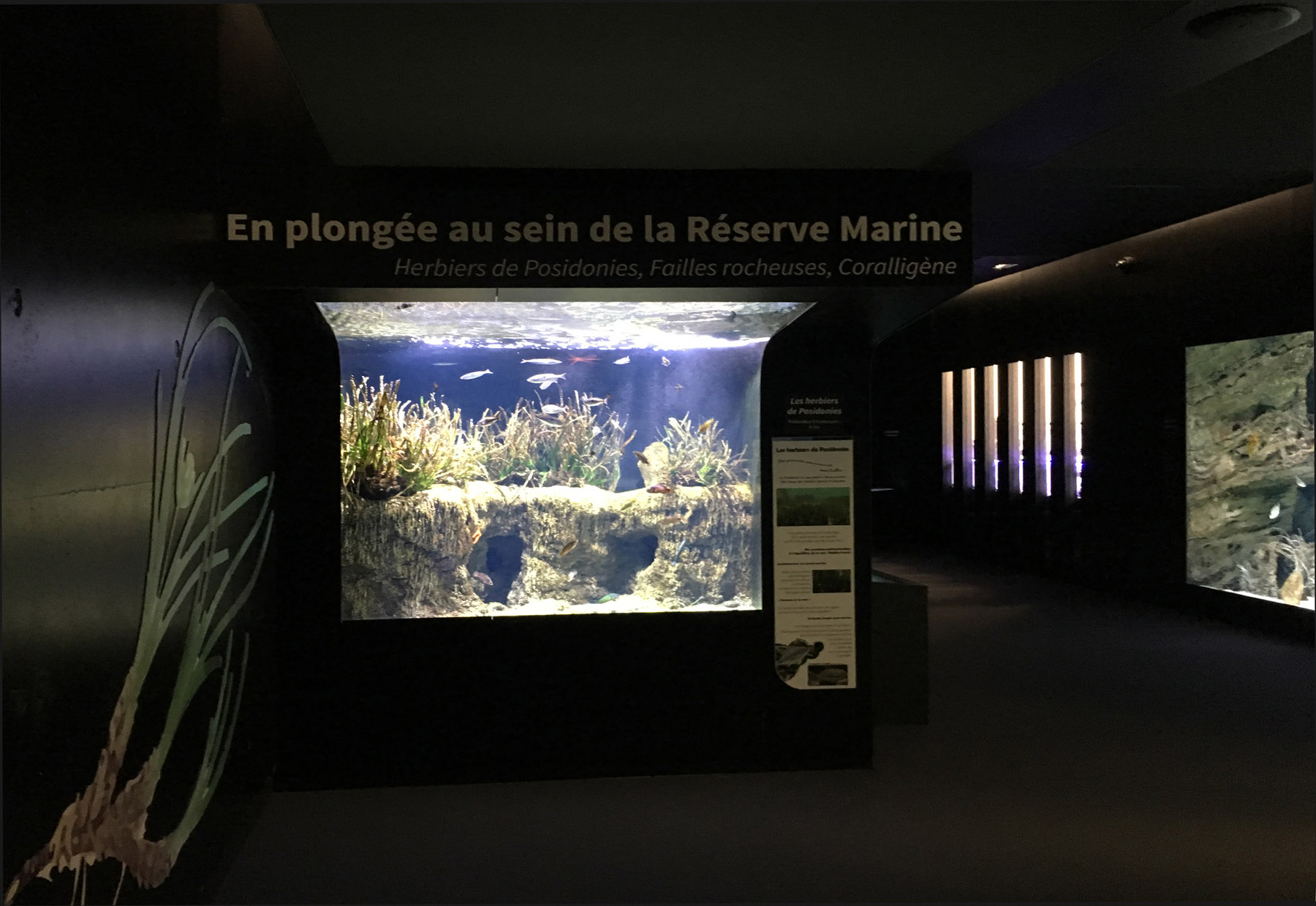 Biodiversarium - aquarium et laboratoires de recherches_Vue sur les bassins